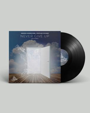 Vinyl-Never.png