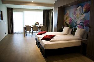 HOTEL-STAYEN-SKYBOX-4-3.jpg