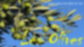 Logo-Les-Olives-Nat.png