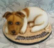 Bridgend, celebration cake