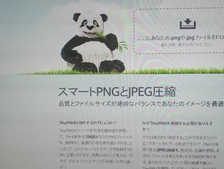 パンダが救世主!