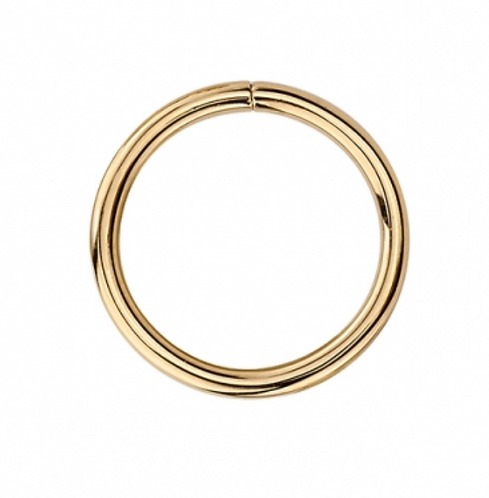 14k Gold Seamless Hoop