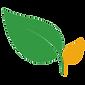 ozstar logo - transparent background.png