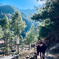 Donky, Everest Base Camp Trek