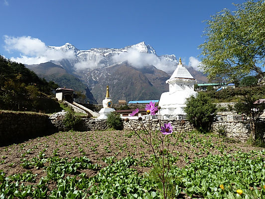 Sherpa village, SKA adventures