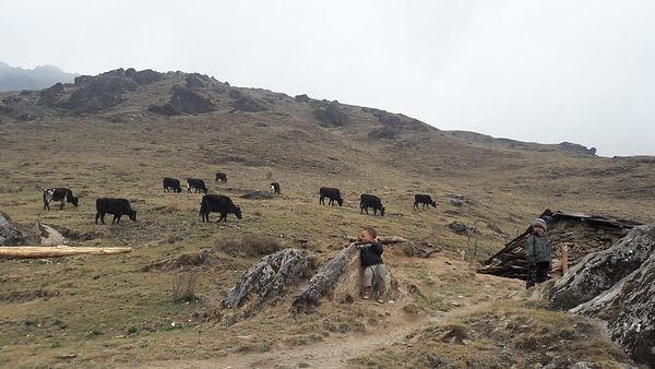 Yak Pikey peak, ska-adventures.com.jpg