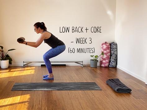Low Back & Core Week 3 (1246)