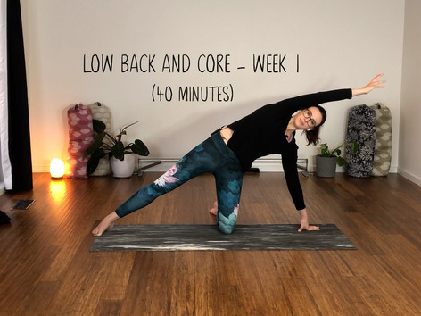 Lower Back and Core Week 1 (1241)