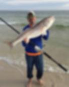Alan's redfish