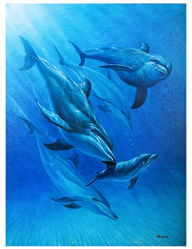 dolphin porpoise birth painting