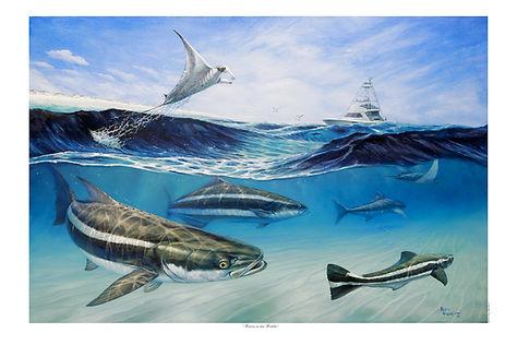 cobia fishing and manta ray painting