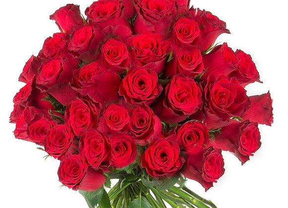 50 Premium Roses