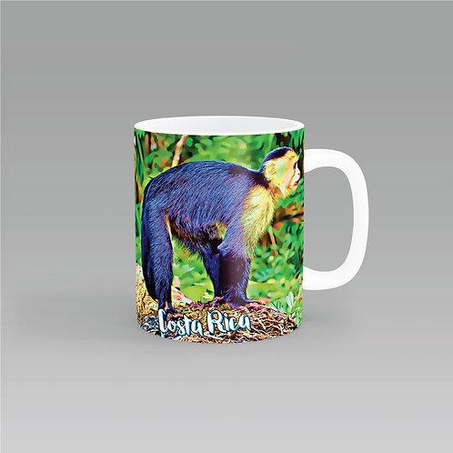 Serie Costa Rica - Mono Capuchino