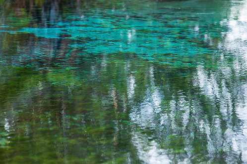 Monet Dream