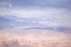 Abstract Sunset Sky Tasman New Zealand Art