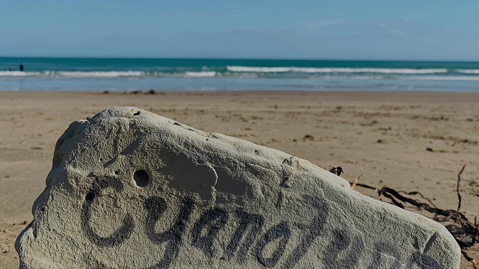 Artist on the beach New Zealand