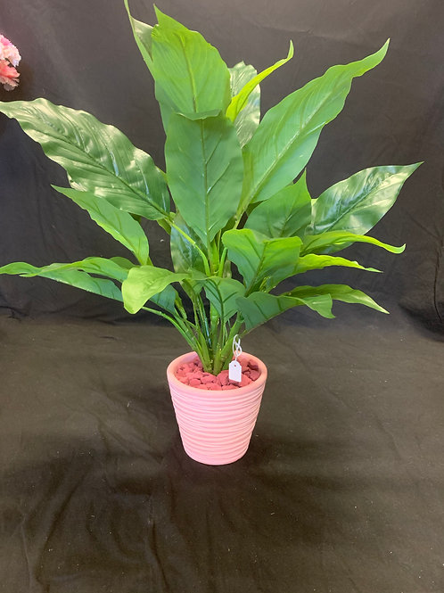 Peace Lily - Artificial