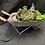 Thumbnail: Artificial wheelbarrow succulent