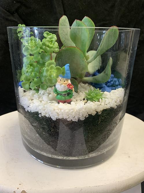 Fresh elf succulent pot