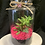 Thumbnail: Fresh pink rock succulnt pot