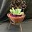 Thumbnail: Fresh chair succulent