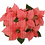 "Thumbnail: 6"" Poinsettia with Gold Pot Cover"