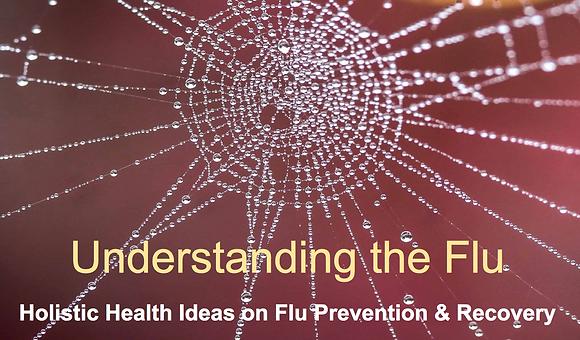 Understanding the Flu