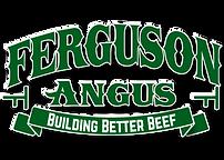 Ferguson-Angus.png