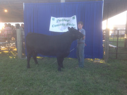 Tagg with his Champion Angus Heifer