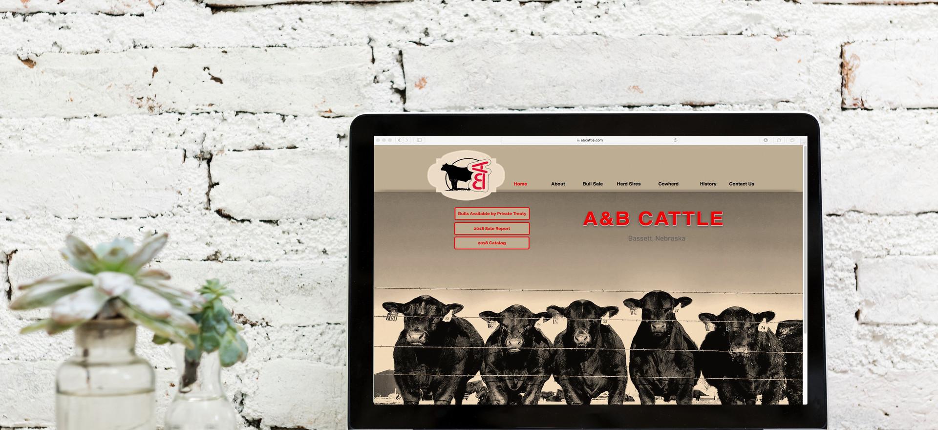 A & B Cattle