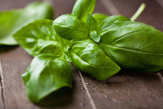 A million and one things to do with Basil
