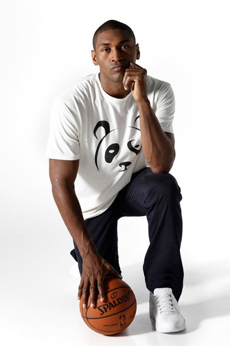 "Author Interview ""Metta World Peace"""