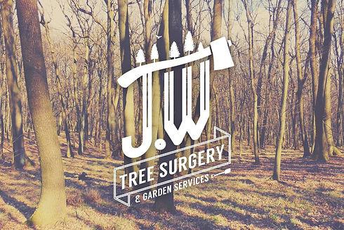 JW_Trees-Background (2).jpg