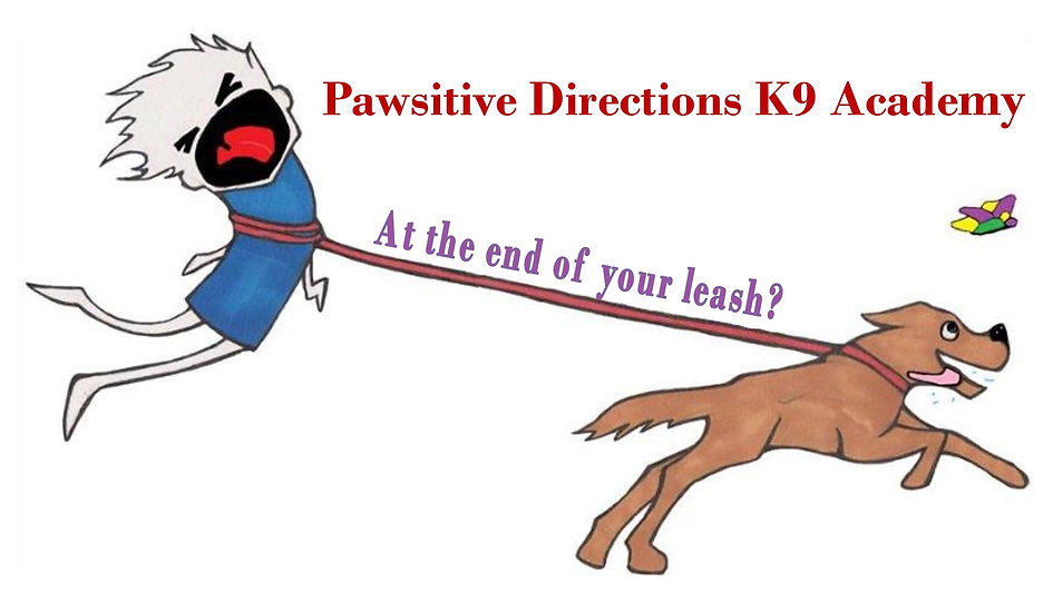 Slide show about Pawsitive Directins K9 Academy