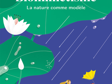 Un prix pour Biomimétisme!