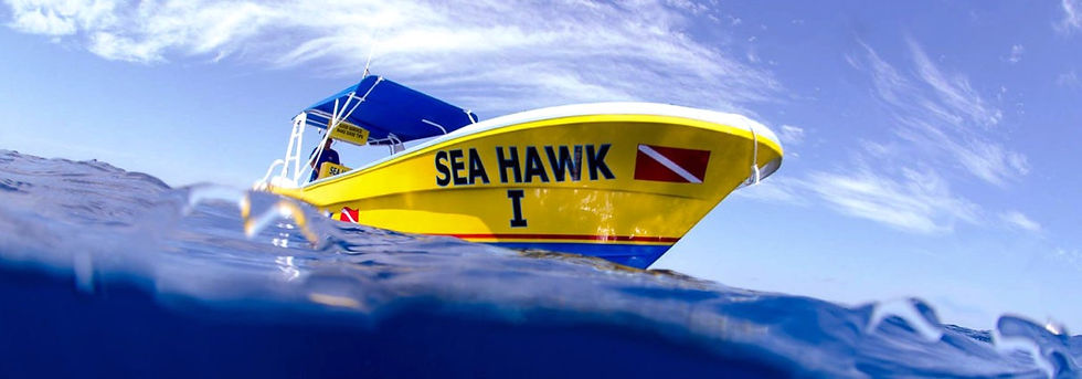 Sea-Hawk-Divers-hd-1-1-1210x423_edited.j