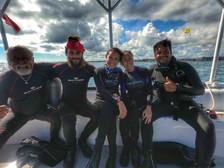 Sea Hawk Family
