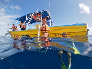 Sea Hawk Whale Shark Tour
