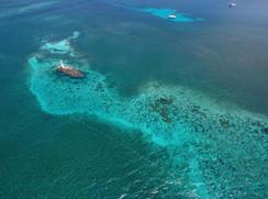 Farito Reef Isla Mujeres