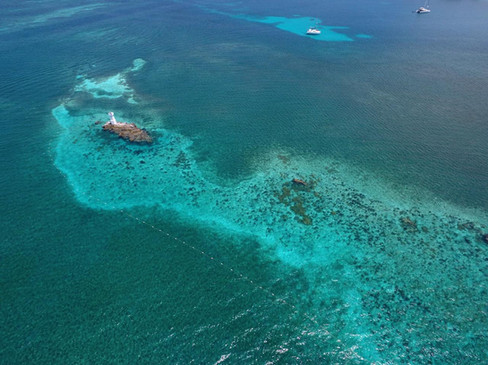 Isla Mujeres Reef
