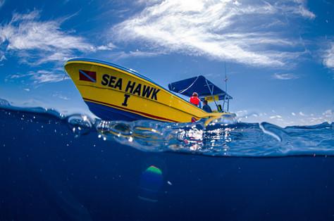 Sea Hawk Boat