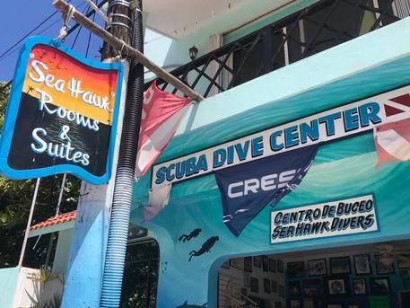 Scuba center, diving, snorkeling, fishing, whale shark, dive courses