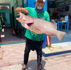 Caught a Big One in Isla Mujeres