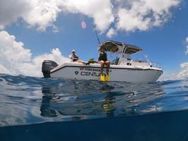 Fun aquatic adventures with Sea Hawk Divers