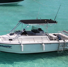 Boat tour with Sea Hawk Divers Isla Mujeres