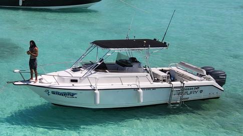 Sharky boat fishing trips