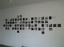 """Vista da Exposição """"Detalhes"""", de Juliana Hofmann"""