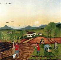 A colheita,1996