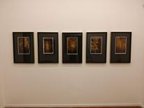 """Vista da Exposição """"Sobre Viventes"""", de Juliana Hoffmann"""