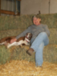 Patty's 4H Club Lambs, 2014 Lamb Sale, Patty's Club Lambs, Club Lambs Chinook MT, Nissen Club Lambs, Patty Nissen Cross, Nissen Angus